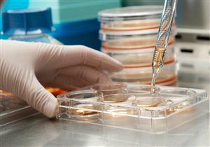 تحليل بسيط يكشف عمر الإنسان البيولوجي
