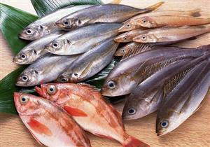 هل يأتي اليوم الذي لا نجد فيه الأسماك في قائمة طعامنا؟