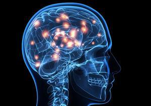 علماء روس يتوصلون إلى تقنية للتحكم في مركز الرغبة في المخ البشري