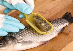علماء يكشفون فائدة علاجية غير مسبوقة لحراشف الأسماك