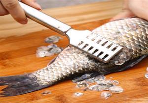 اكتشاف فائدة علاجية غير مسبوقة لحراشف الأسماك