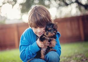 أمراض تسببها تربية الحيوانات الأليفة في المنزل.. كيف تحمي نفسك؟