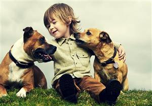تهوي تربية الحيوانات الأليفة؟.. هذه التطعيمات ضرورية لتجنب أمراضها