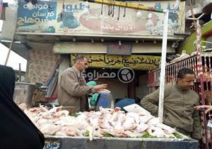 توقعات بارتفاع أسعار الدواجن بنسبة 15% في بداية شهر رمضان