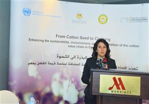 الصناعة تعد خطة شاملة لتعزيز تنافسية القطن المصري