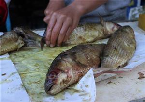 ما تأثيرات الأسماك المملحة على الجسم والصحة؟