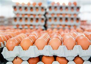 البني أم الأبيض؟.. دليلك لاختيار بيض شم النسيم