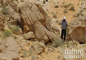 نيتشر: العثور على أول اكتشاف أحفوري للإنسان العاقل في السعودية (صور)