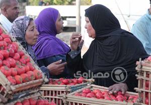 بينها الطماطم والخيار والبصل.. أسعار الخضروات ترتفع قبيل شهر رمضان