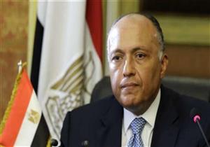 وزير الخارجية: مصر لا تزايد على القضية الفلسطينية لتحقيق أغراض داخلية