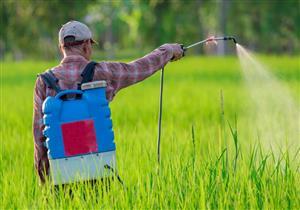 للمزارعين.. المبيدات الحشرية ربما تصيب بالشلل الرعاش