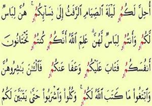 من معاني القرآن {أُحِلَّ لَكُمْ لَيْلَةَ الصِّيَامِ الرَّفَثُ إِلَى نِسَائِكُمْ }.. ما هو الرفث؟