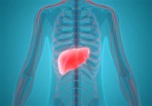 للمريض والمتبرع.. كل ما يجب معرفته عن زراعة الكبد