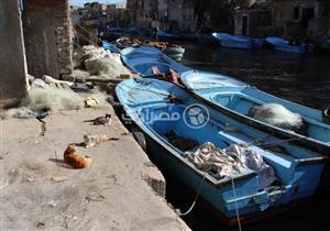 ضبط 9 قوارب صيد مخالفة في كفر الشيخ