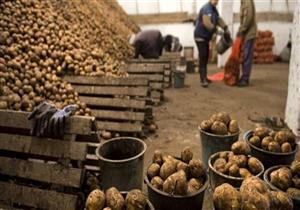 مدير مركز المناخ يحذر من زراعة البطاطس والأرز قبل الخريف