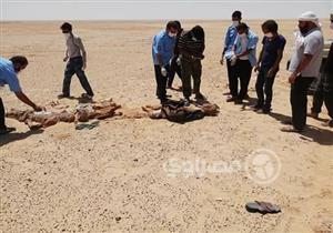 """رحلة الموت من الفيوم إلى صحراء ليبيا.. قصة """"سيد"""" ضحية جديدة للمهربين عبر الحدود"""