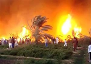 """""""الحماية المدنية"""" تسيطر على حريق التهم 80 نخلة في أسوان"""