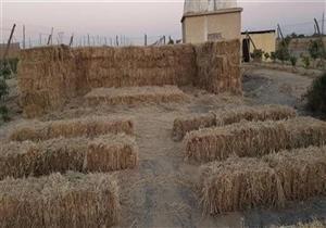 رئيس جهاز شئون البيئة: بدء منظومة جمع وتدوير قش الأرز بالشرقية