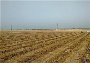 محافظ شمال سيناء يكشف تفاصيل مشروع التجمع الزراعي الجديد - فيديو