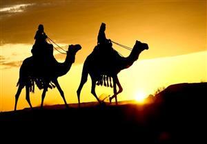 فى حديث الهجرة.. دروسٌ من الدّعوة المُحمدية يوضحها مستشار شيخ الأزهر