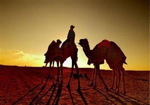 3 صور من عناية الله للرسول في الهجرة المباركة