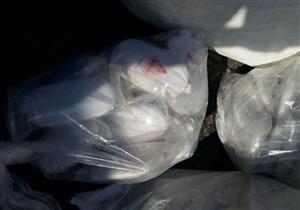 بالصور- إحباط تهريب كمية من مخدر الحشيش عبر ميناء بورسعيد