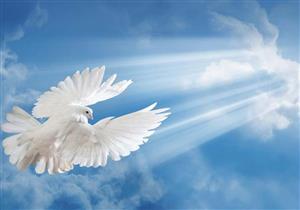 ثلاثة أعمال تكفل لنا دخول الجنة بسلام