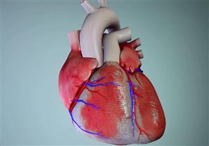 اختبار جديد يتنبأ بالإصابة بالأزمة القلبية والسكتة الدماغية
