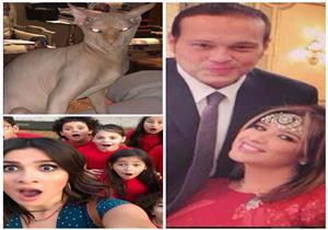 طلاق وقط مرعب وقضية.. 4 مواقف أثارت فيها ياسمين عبدالعزيز الجدل