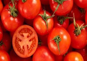 دراسة جديدة: الطماطم تزيد نسبة الحيوانات المنوية لدى الرجال