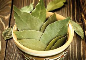 علاج فعّال للإسهال.. 8 فوائد مذهلة لورق الجوافة