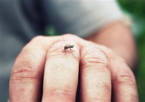 تطوير عقار جديد يغير رائحة الجسم للحد من لدغات البعوض