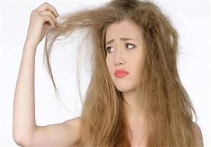 منها الموز بزيت اللوز.. 4 وصفات طبيعية لعلاج الشعر الجاف (إنفوجراف)