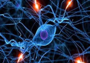 احترس.. انخفاض الخلايا الليمفاوية بجسمك يهدد بالموت المبكر
