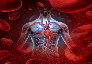 احترس.. أمراض القلب والأوعية الدموية تهددك بهذا الخطر