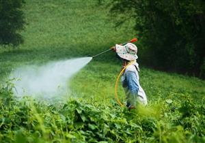 علماء يكشفون: المبيدات الحشرية لا تسبب السرطان