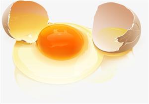 صفار أم بياض البيض.. أيهما أفضل لصحة الإنسان؟