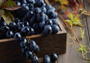 يعالج الصداع النصفي ويحميك من السرطان.. 9 فوائد مذهلة للعنب الأسود
