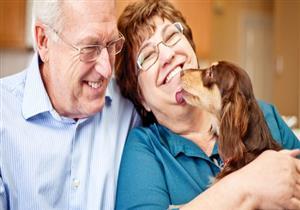 تربية الحيوانات الأليفة تعالج الآلام المزمنة لكبار السن