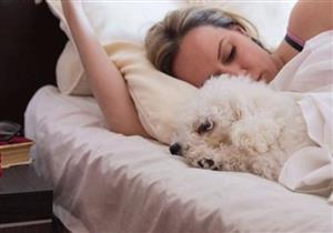 دراسة جديدة تكشف فوائد صحية للنوم بجوار الكلاب
