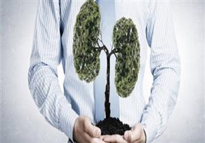 أبرزها الزيتون.. 5 طرق طبيعية لتنظيف رئة المدخنين