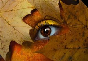 5 نصائح للحفاظ على صحة العين في فصل الخريف