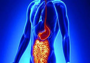 أبرزها الزبادي..  6 أطعمة تساعد في تخفيف حدة أعراض كرونز