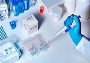اعتمادًا على رئة الثور.. علماء روس يحاولون استخلاص علاج لكورونا