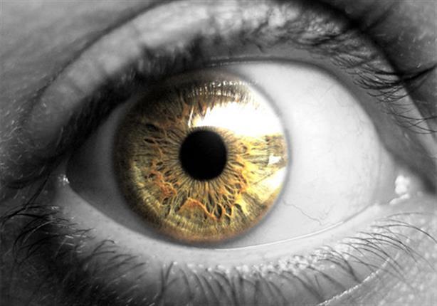 ١٠ حقائق مدهشة وغريبة عن العين