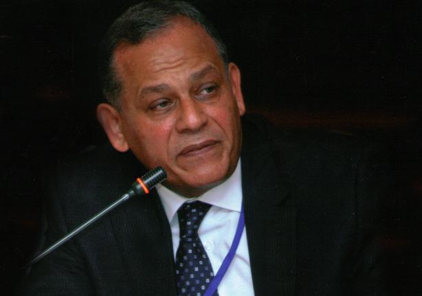 السادات: مؤتمر العليا للانتخابات اليوم أبلغ رد على المشككين في نية الدولة