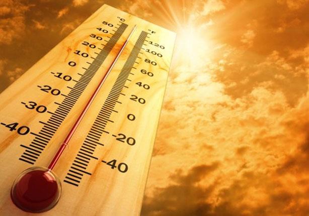 في الطقس الحار.. 4 أطعمة تحميك من ضربة الشمس (صور)
