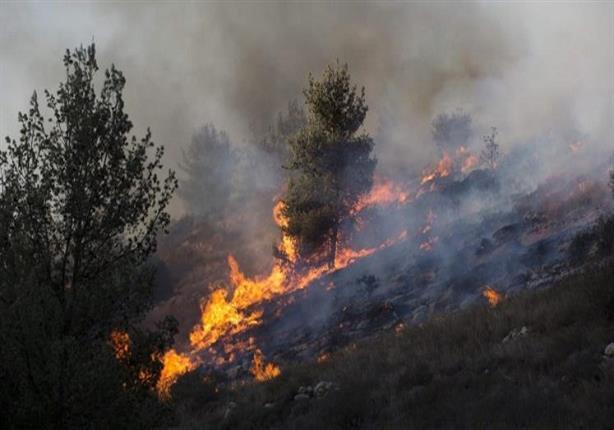 حرائق غابات في إسرائيل بسبب ارتفاع درجة الحرارة