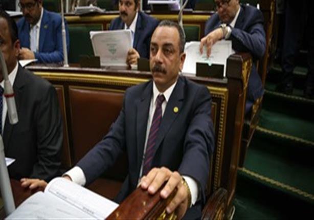 برلماني: فتح باب الترشح لانتخابات مجلس الشيوخ حدث تاريخي