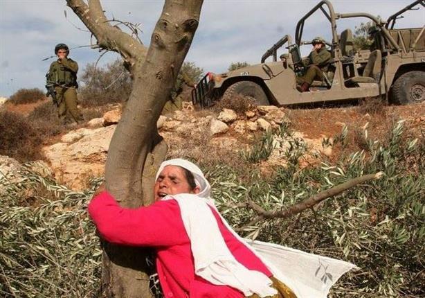 بمناسبة يوم المرأة: استمرار الانتهاكات الاسرائيلية لحقوق نساء فلسطين